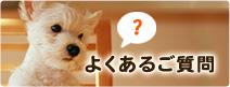 名古屋で土日祝日診療の動物病院パール犬猫病院のよくあるご質問